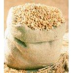 Getreide Malz