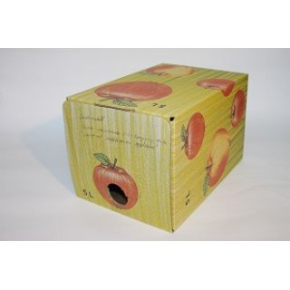 Bag in Box Karton 5 Liter bunt Apfeldekor